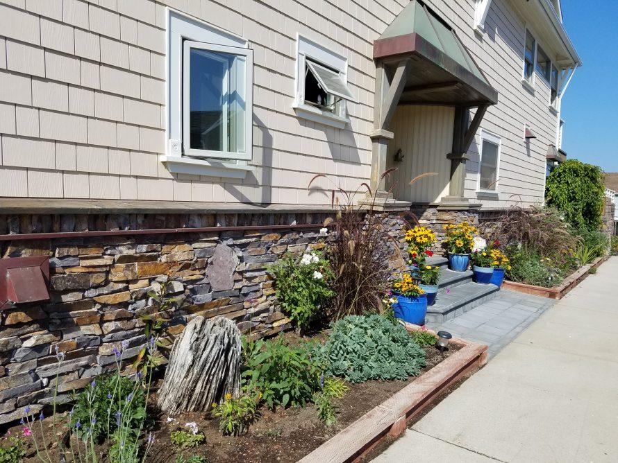 Drought Tolerant Garden Tips